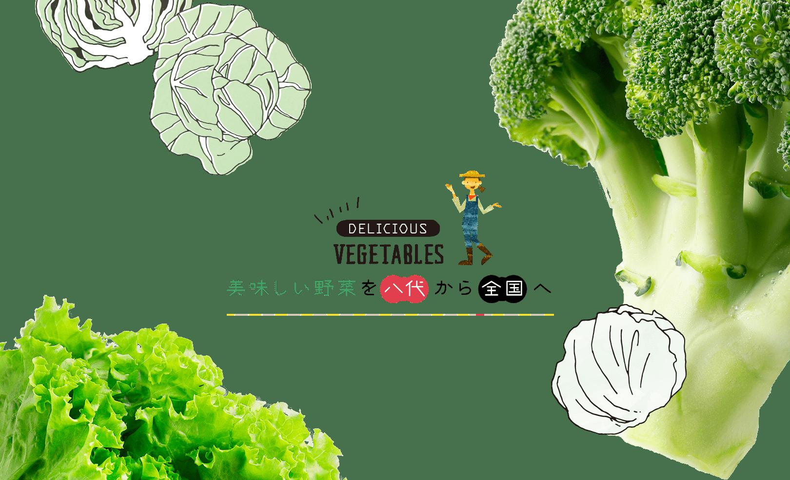 美味しい野菜を八代から全国へ